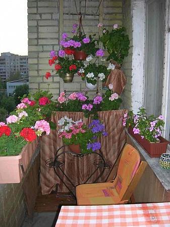 Лестница_на_балконе