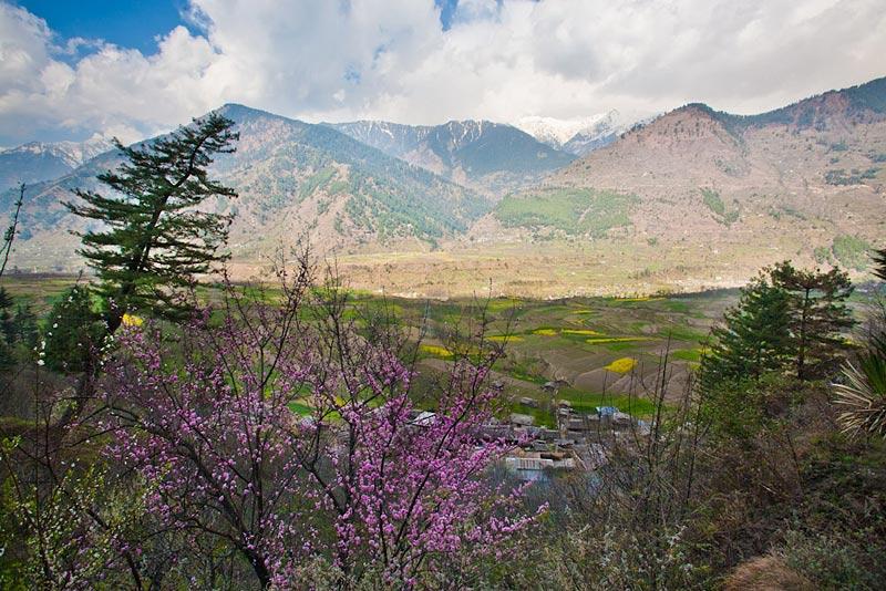 В Индии долину Кулу превратят в заповедник