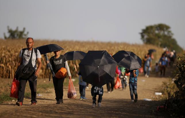 Apple собирается помочь европейским странам в разрешении кризиса мигрантов