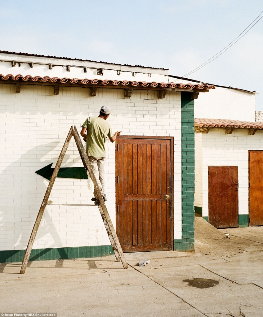 2E4BA79800000578-3311645-A_local_man_stands_on_a_wooden_ladder_looking_focused_as_he_begi-a-18_1447153963396