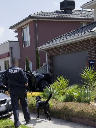 Австралийская Федеральная полиция задержала налоговых аферистов