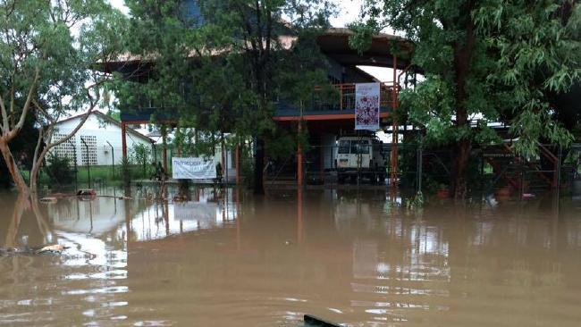 Окрестности Дейли-Ривер в Северной Территории кишат крокодилами