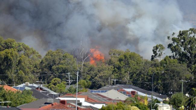 Западная Австралия не перестает гореть