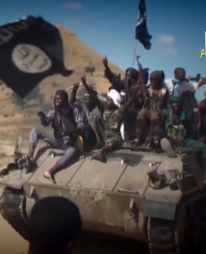 В борьбе с Боко Харам Нигерии поможет Великобритания