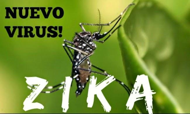 Recife_Zika