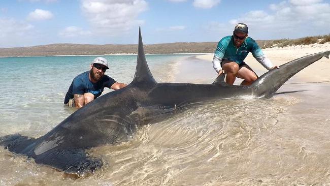 Facebook взбудоражен фотографиями двоих рыбаков