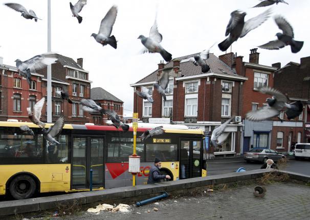 В Бельгии найдена жилплощадь террористов, причастных к парижским терактам