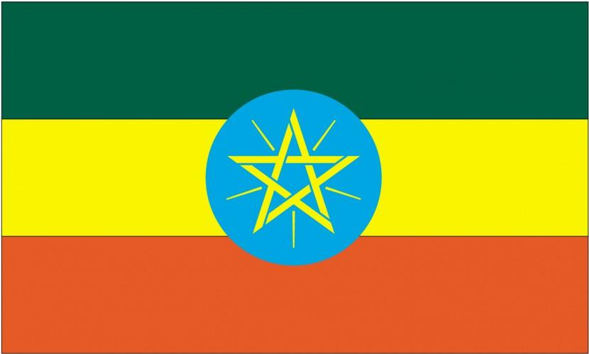 В Эфиопии жестоко расправляются с демонстрантами