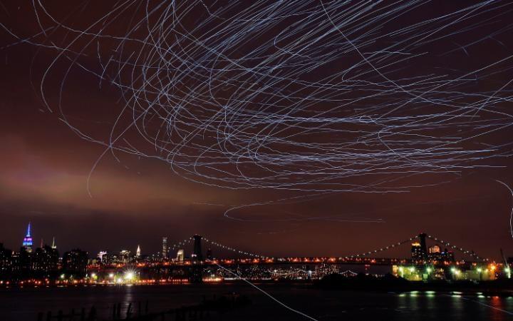 В Нью-Йорке зоозащитники пытаются запретить световое шоу