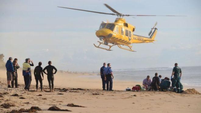 В Австралии от нападения акулы погиб серфер