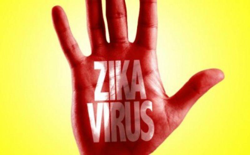 ВОЗ исследует риски распространения вируса Зика