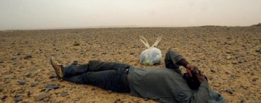 В пустыне Нигера найдены 34 тела
