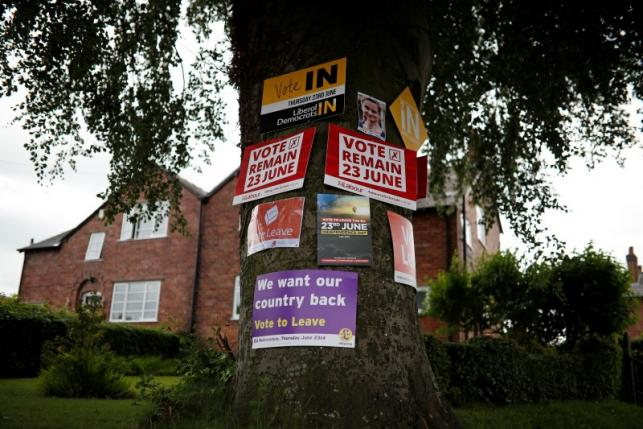 EU referendum posters are seen attached to a tree in Lymm