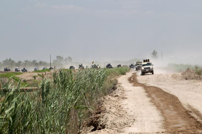 Military vehicles for Iraqi security forces and Shi'ite fighters are seen near Falluja