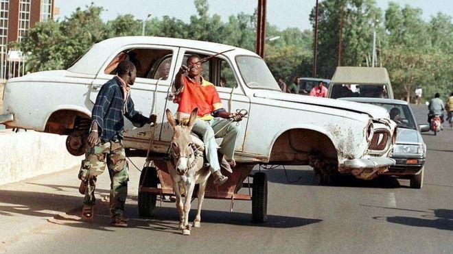 Буркина-Фасо запретила экспорт ослиных шкур