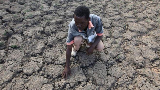 В Зимбабве правительство отказывает в гуманитарной помощи политическим оппонентам