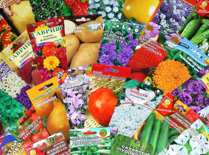 Покупка семян в лучшем интернет-магазине
