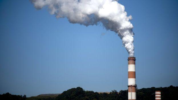 Трамп против экологии: очередные противоречивые назначения