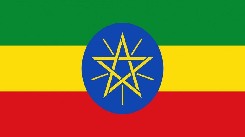 В Эфиопии осудили 20 исламистов