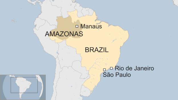 _93208887_020117_brazil_amazonas