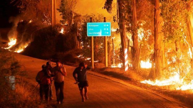 Лесные пожары заставили Чили просить помощи у других стран