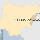 В Нигерии террористки-смертницы начали использовать детей