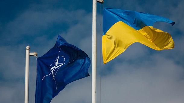 НАТО считает Украину приоритетом в своей повестке дня