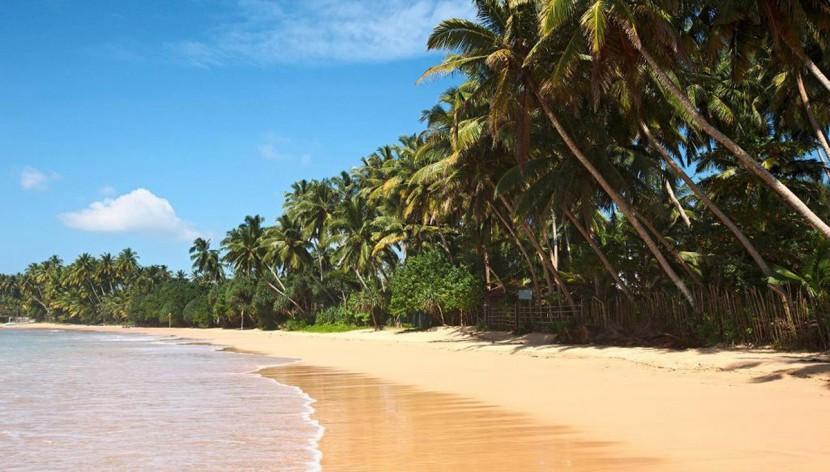 Шри-Ланка приглашает на экскурсии!