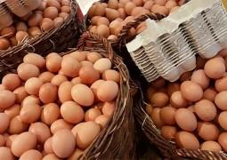 В Индии продают искусственные яйца