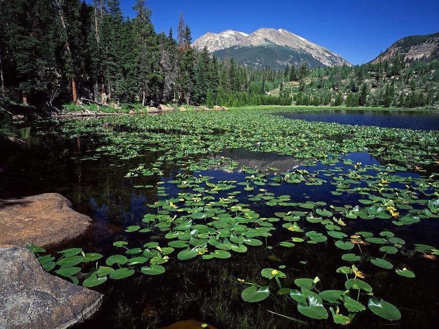 Cub-lake-in-Rocky-mountain-national-park-Colorado