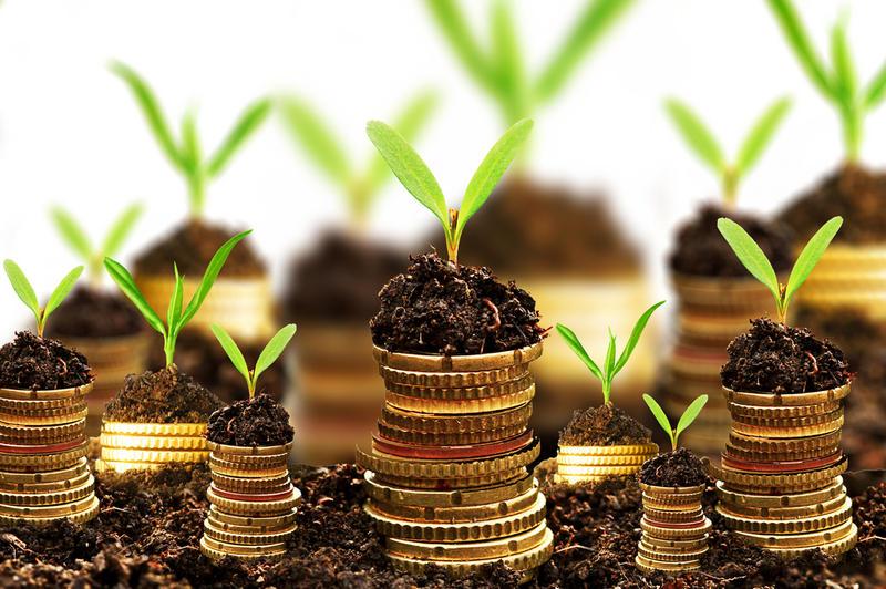Как и зачем нужно инвестировать деньги