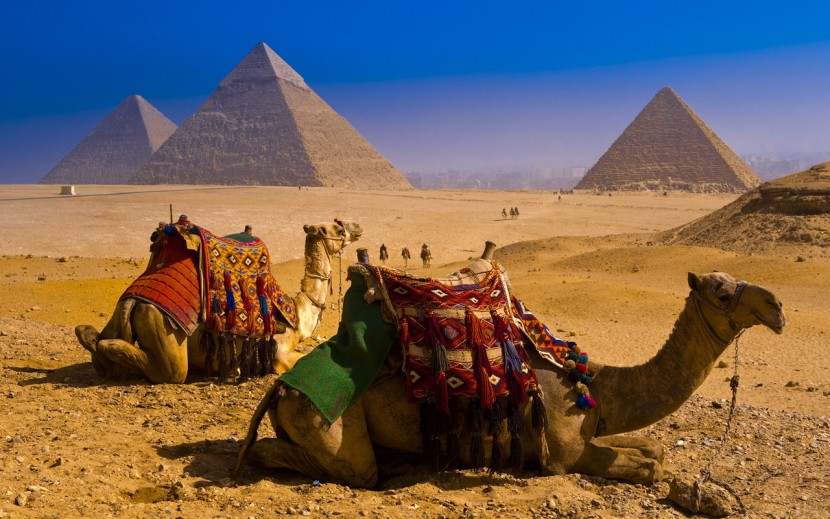 Египет новости туризма