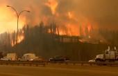 Лесные пожары «уничтожают» Португалию