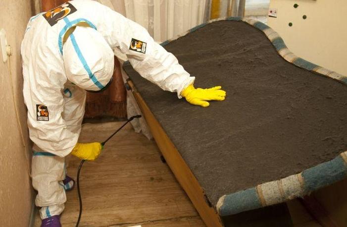 Дезинфекция в рабочих и домашних помещениях