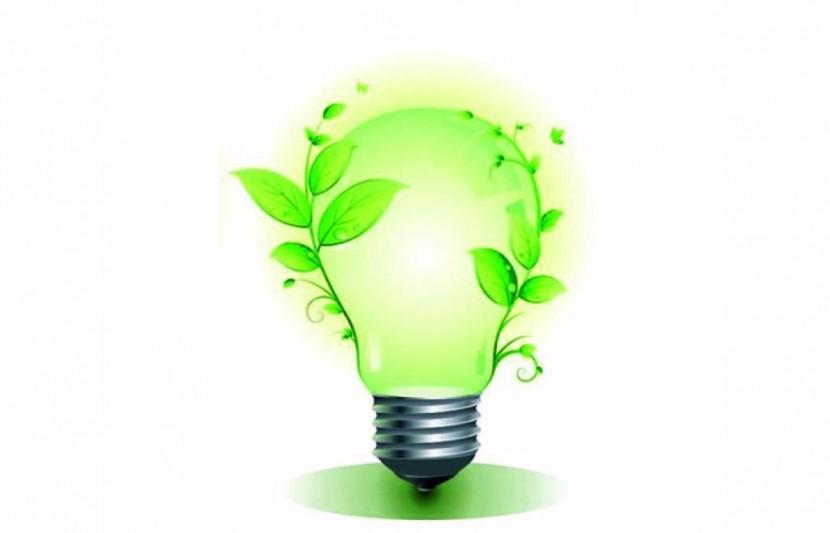 Экологический сертификат – гарантия безопасности продукта