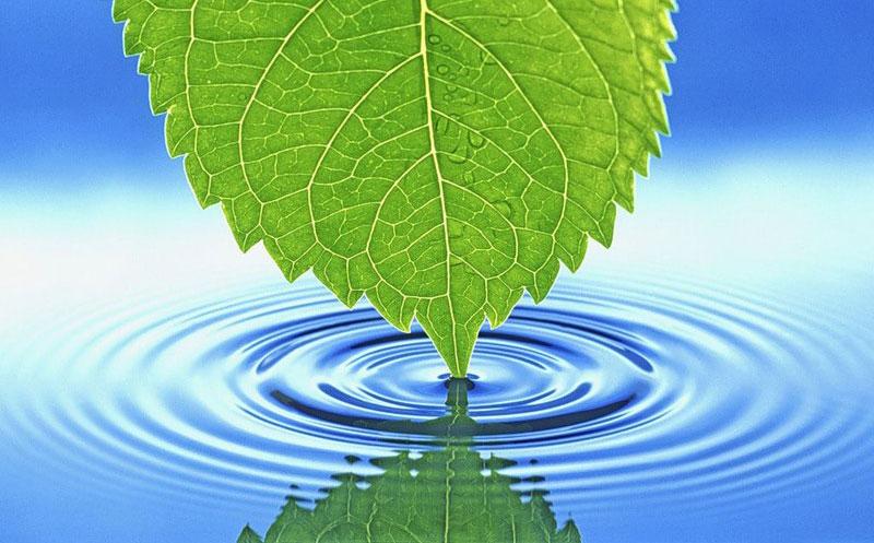 Потребность организма в воде