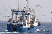 В льдах Северного Ледовитого океана теперь запрещено ловить рыбу