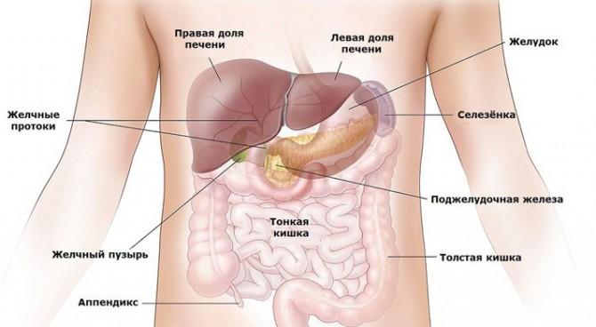 Проблемы с желудком и их решение
