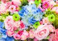 Цветы через интернет: комфортно и эффектно!