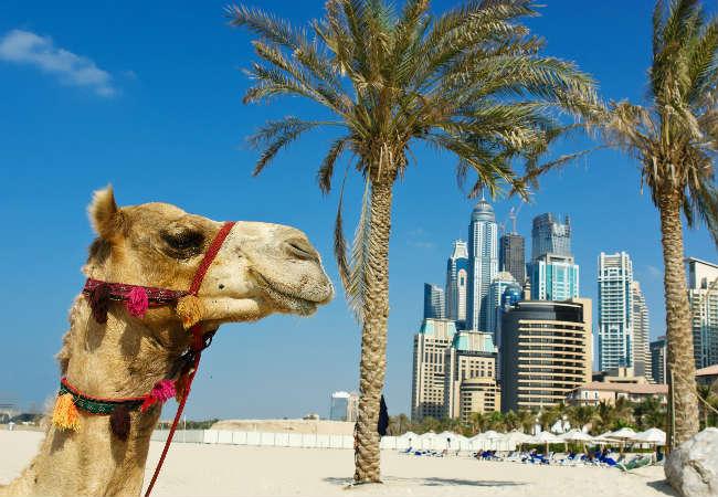 Туры в ОАЭ — выгодно как никогда