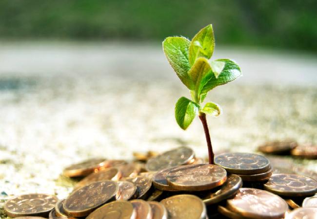 Во что инвестировать и сколько можно зарабатывать?