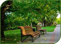 Практически завершилось благоустройство всех московских народных парков
