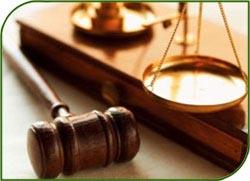 Высший арбитражный суд принял жалобу по иску за реставрацию объекта «Юсуповский дворец»